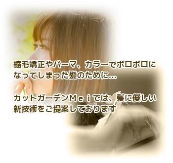 mei_top_02
