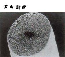 tyokumoudan